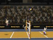 BunnyLimpic Volleyball 20