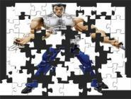 Wolverine Action Puzzle